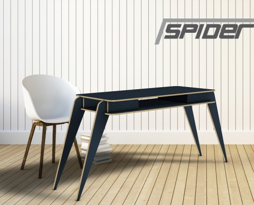 taple_spider_00